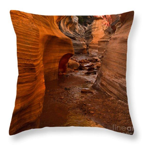 Willis Creek Slot Canyon Throw Pillow by Robert Bales