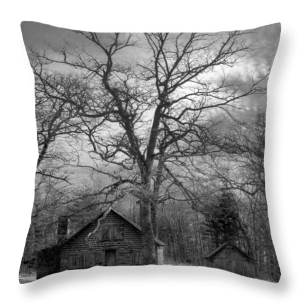 Wilson Lick Ranger Station Throw Pillow by Debra and Dave Vanderlaan
