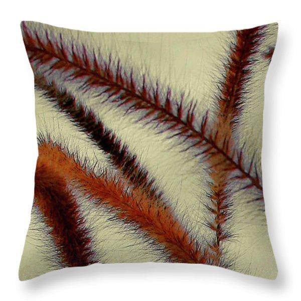 Wind Throw Pillow by Ben and Raisa Gertsberg