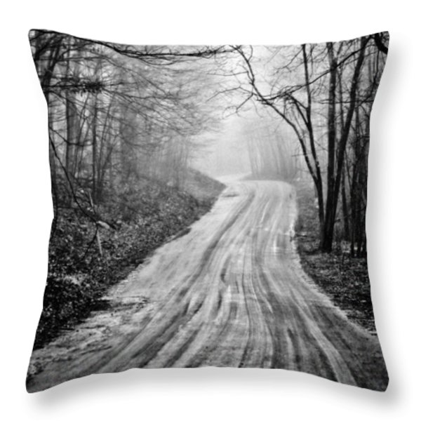 Winding Dirt Road Throw Pillow by Karol  Livote