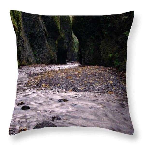 WINDING THROUGH ONEONTA  GORGE Throw Pillow by Jeff  Swan