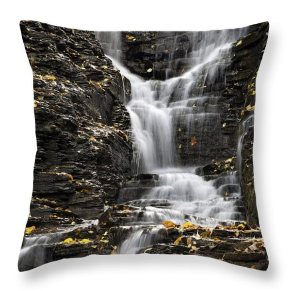 Winding Waterfall Throw Pillow by Christina Rollo