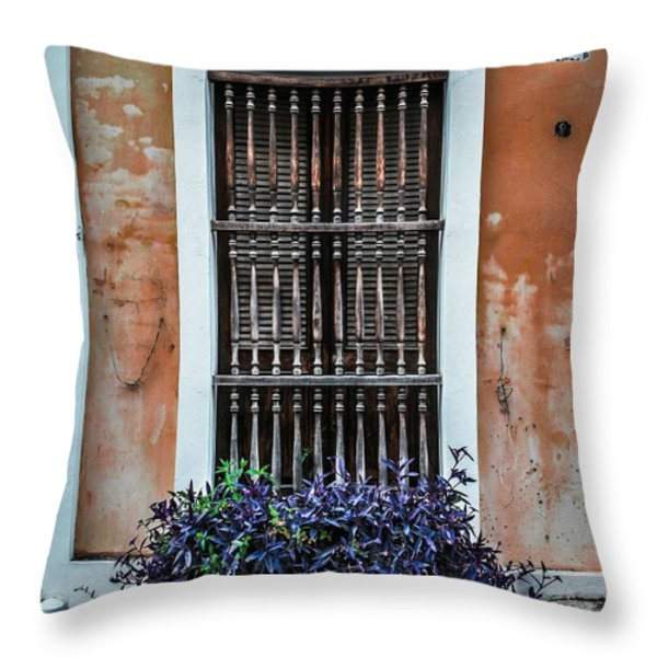 Window 53 Throw Pillow by Perry Webster