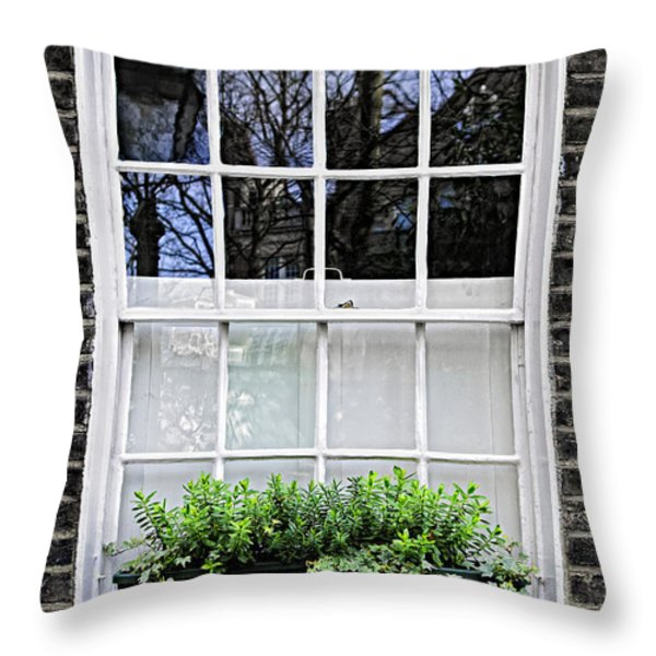 Window in London Throw Pillow by Elena Elisseeva
