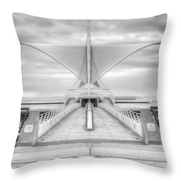 Wing Span Throw Pillow by Scott Norris