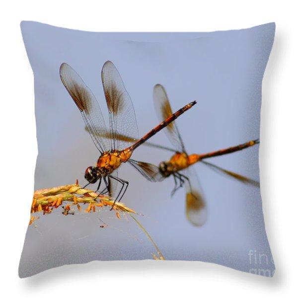 Wingman Throw Pillow by Robert Frederick
