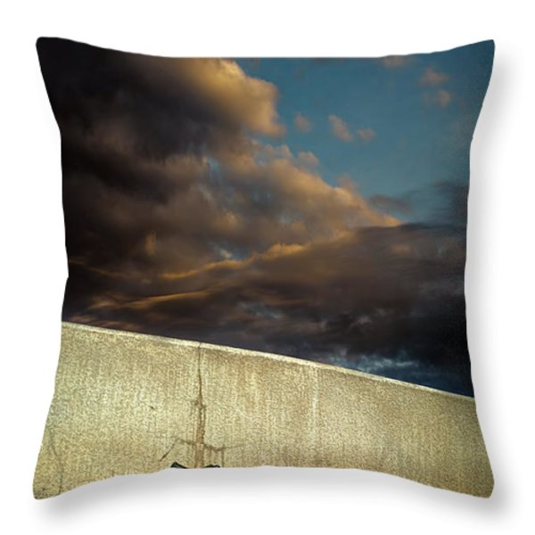 Wingtips  Throw Pillow by Bob Orsillo