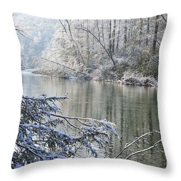 Winter along Williams River Throw Pillow by Thomas R Fletcher