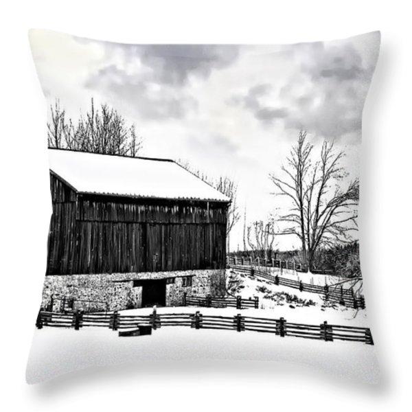 Winter Barn Throw Pillow by Steve Harrington