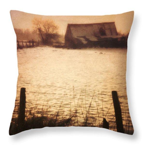 Winter Barn Throw Pillow by Wim Lanclus