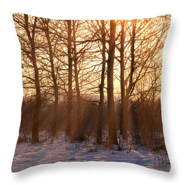 Winter Break Throw Pillow by Wim Lanclus