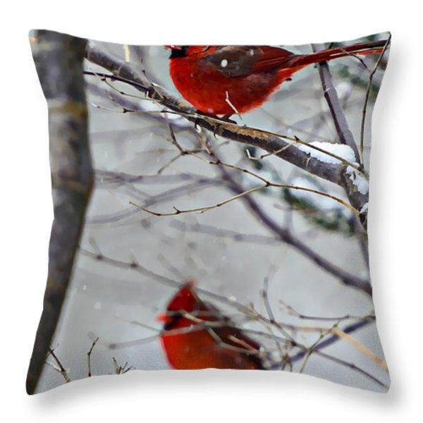 Winter Cardinals Throw Pillow by Susan Leggett