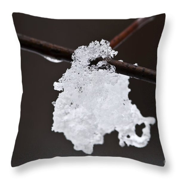 Winter Detail Throw Pillow by Elena Elisseeva