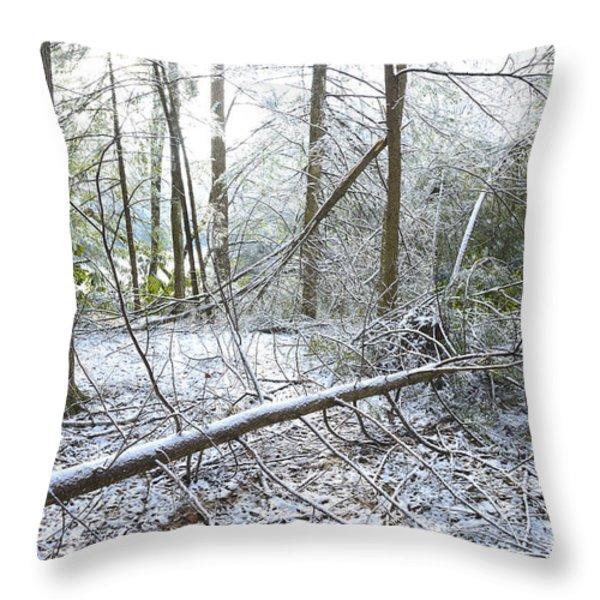 Winter Fallen Tree Throw Pillow by Thomas R Fletcher