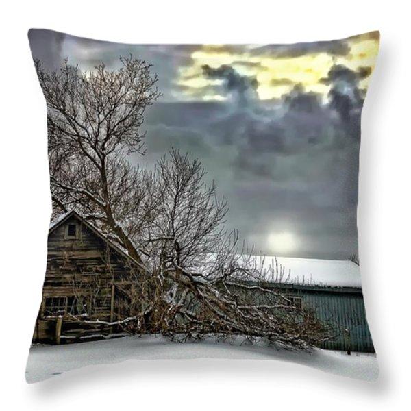 Winter Farm Polaroid Transfer Throw Pillow by Steve Harrington