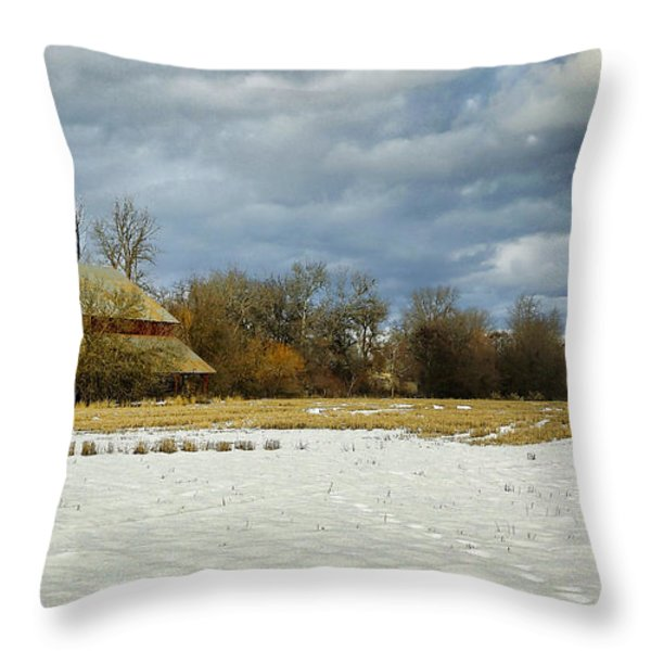 Winter Farm Throw Pillow by Steve McKinzie