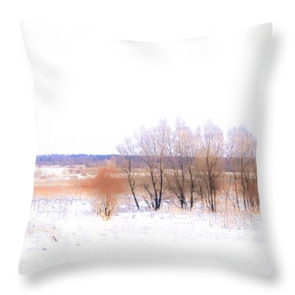 Winter Fields. In Color Throw Pillow by Jenny Rainbow