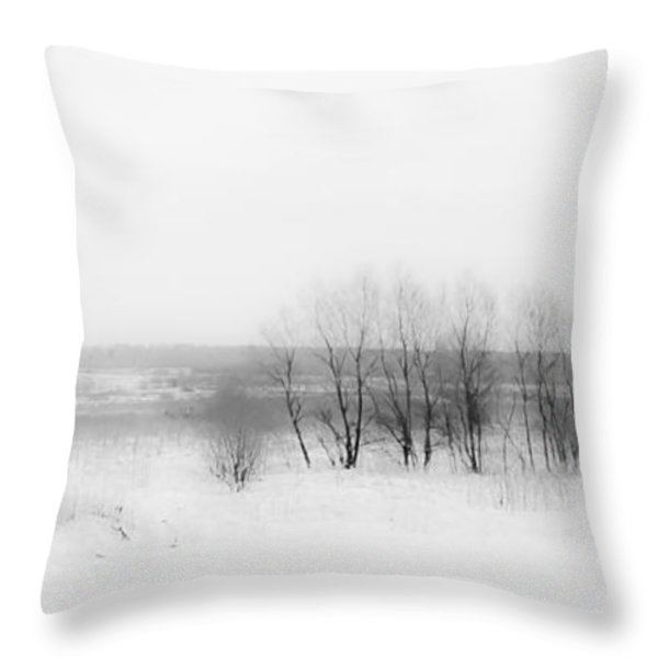 Winter Fields. Monochromatic  Throw Pillow by Jenny Rainbow