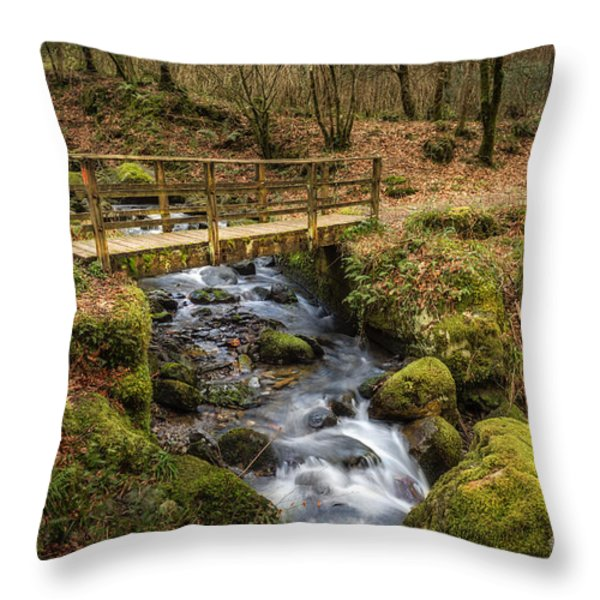 Winter Footbridge Throw Pillow by Adrian Evans