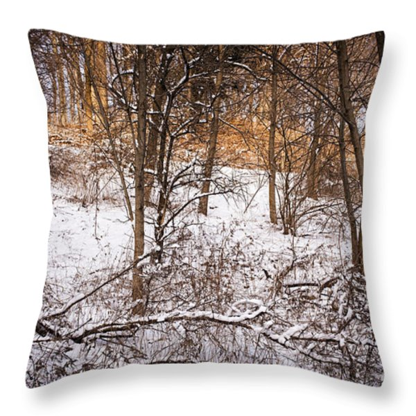 Winter forest Throw Pillow by Elena Elisseeva