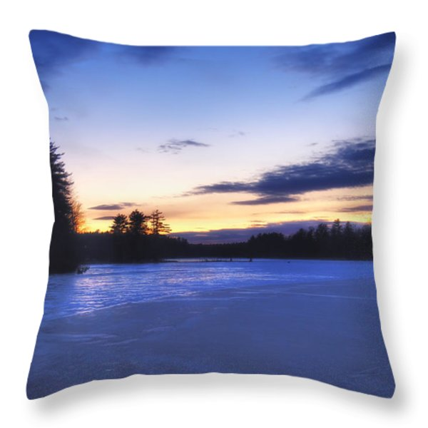 Winter In New England Throw Pillow by Joann Vitali