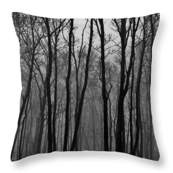 Winter In Pennsylvania Throw Pillow by Benjamin Yeager
