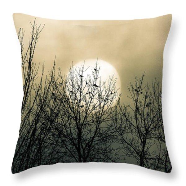 Winter Into Spring Throw Pillow by Bob Orsillo