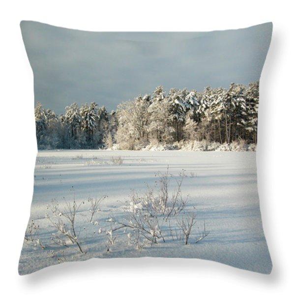 Winter Landscape At Mud Lake Ottawa Throw Pillow by Rob Huntley