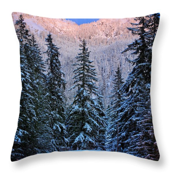 Winter Lodging Throw Pillow by Inge Johnsson