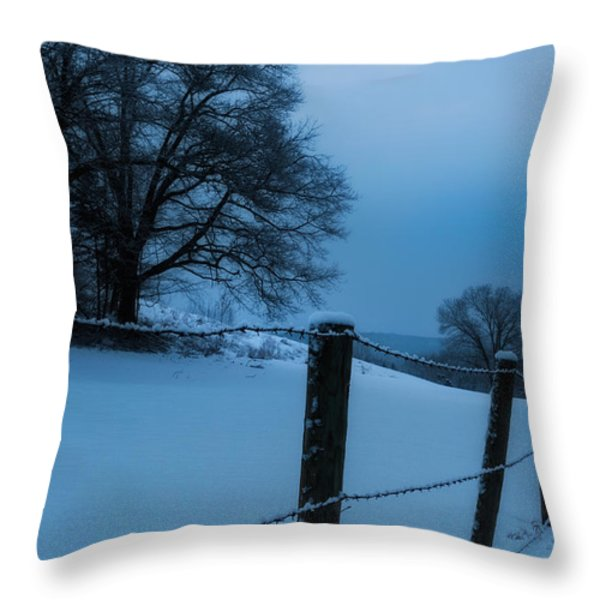 WInter Moon Throw Pillow by Bill  Wakeley