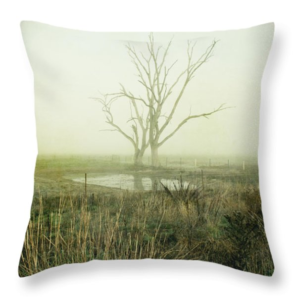 Winter Morning Londrigan 1 Throw Pillow by Linda Lees