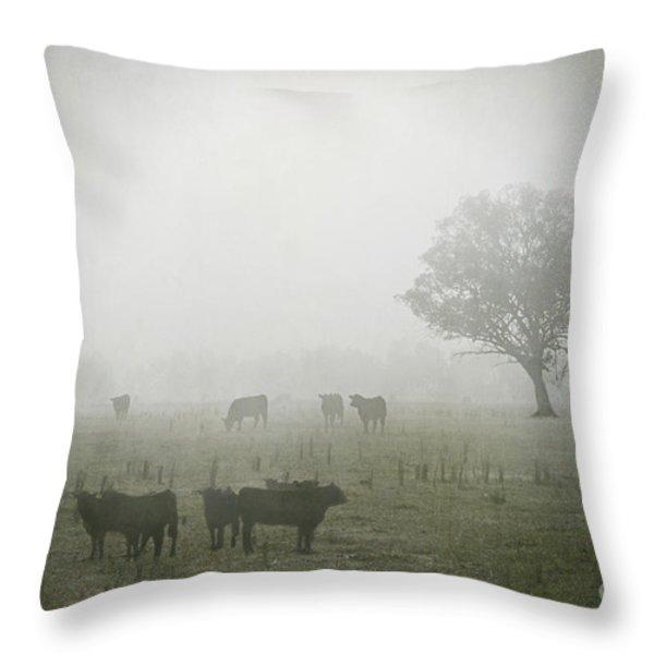Winter Morning Londrigan 5 Throw Pillow by Linda Lees