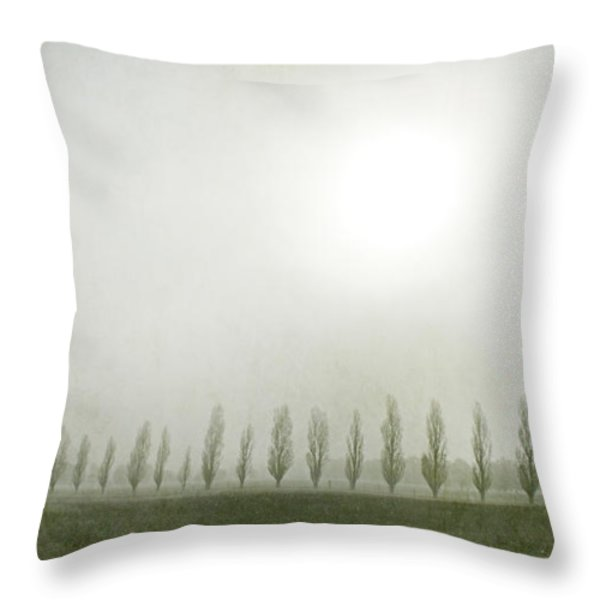 Winter Morning Londrigan 7 Throw Pillow by Linda Lees