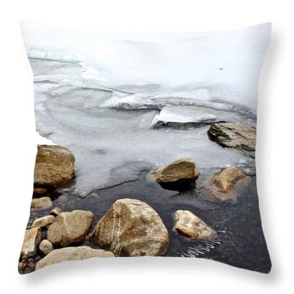 Winter Quabbin Throw Pillow by Randi Shenkman