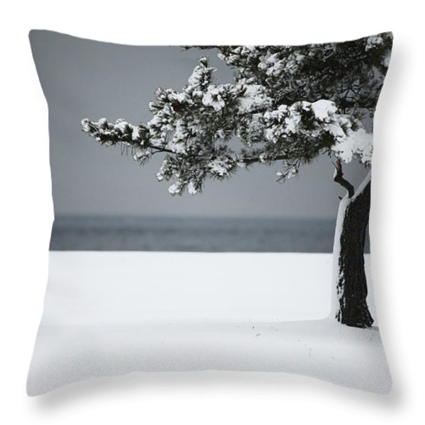 Winter Quiet Throw Pillow by Karol Livote