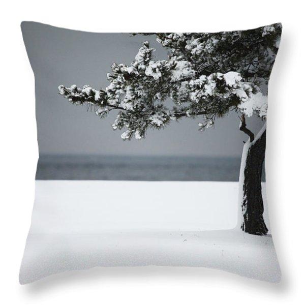 Winter Quiet Throw Pillow by Karol  Livote