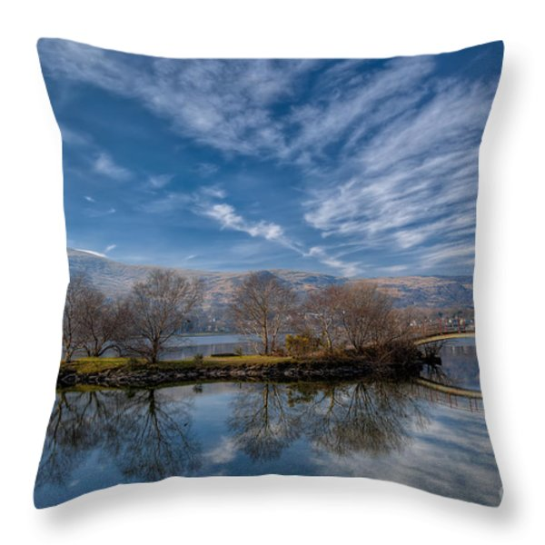 Winter Reflections Throw Pillow by Adrian Evans