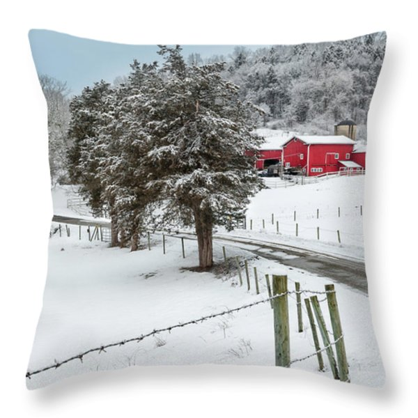 Winter Road Throw Pillow by Bill  Wakeley