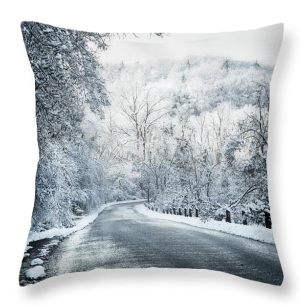 Winter road in forest Throw Pillow by Elena Elisseeva