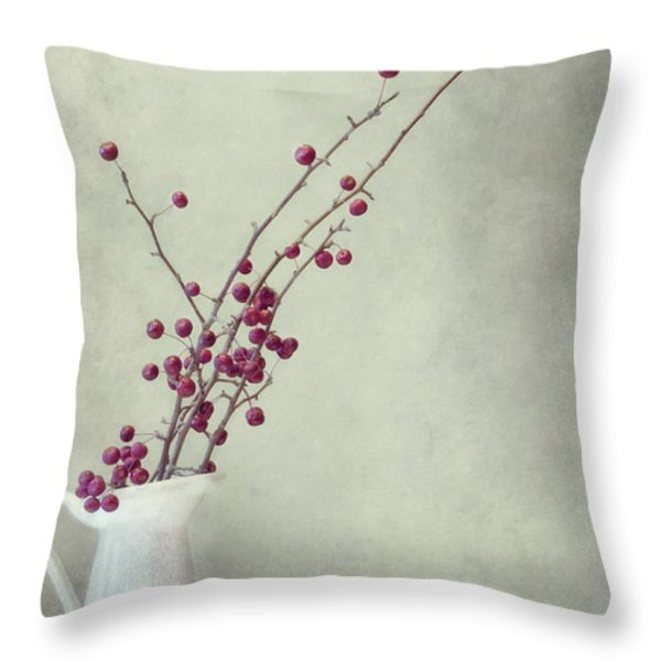 winter still life Throw Pillow by Priska Wettstein