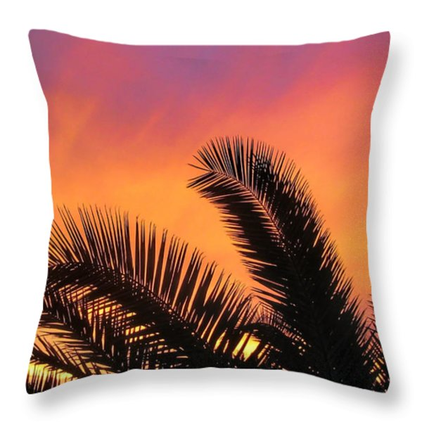 Winter Sunset Throw Pillow by Tammy Espino