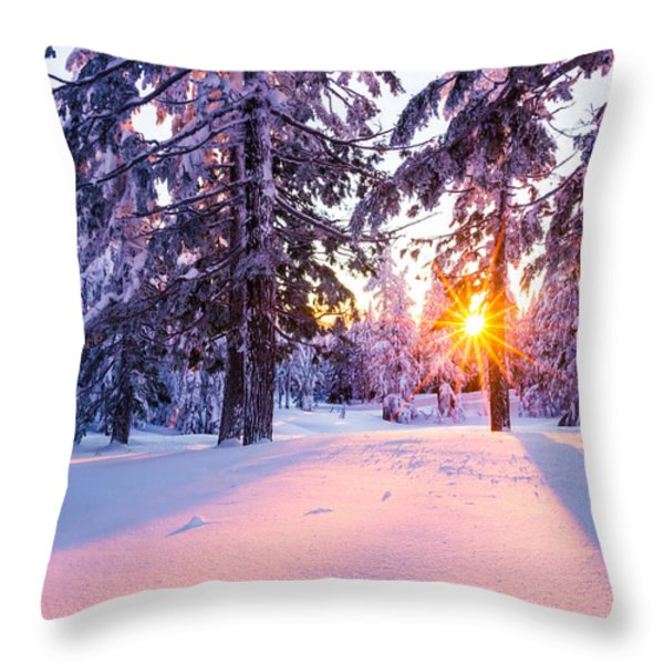 Winter Sunset Through Trees Throw Pillow by Priya Ghose