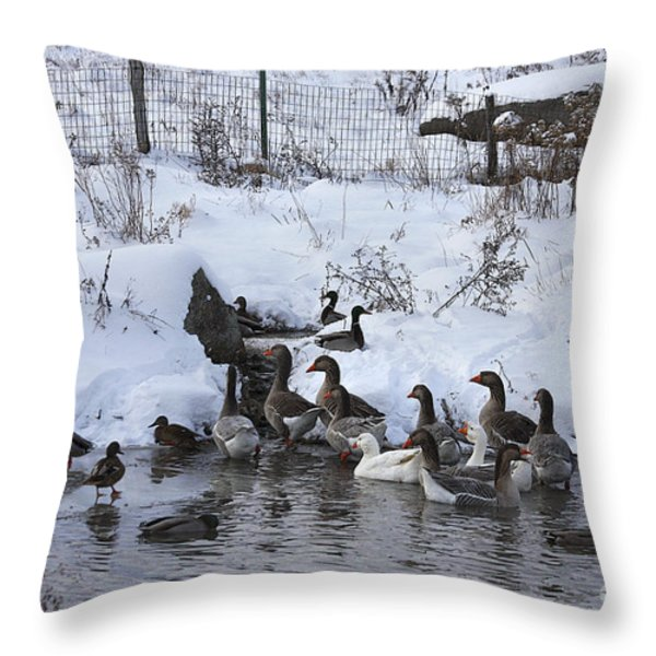 Winter Swimming Hole Throw Pillow by Deborah Benoit