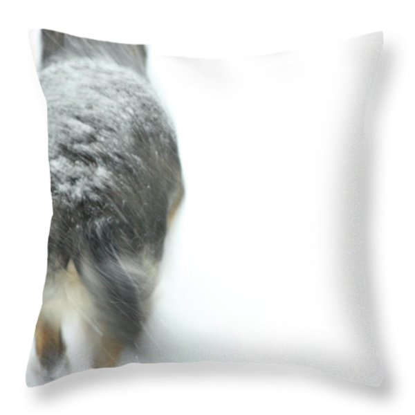 Winter Traveler Throw Pillow by Karol Livote