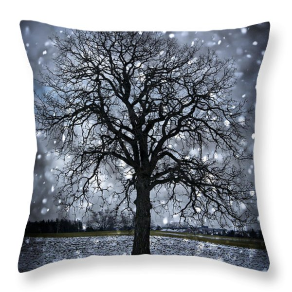 Winter tree in snowfall Throw Pillow by Elena Elisseeva