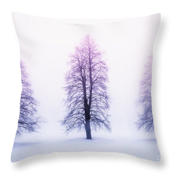 Winter trees in fog at sunrise Throw Pillow by Elena Elisseeva