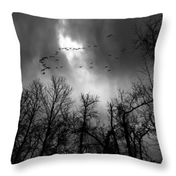 Winter Trees Moving Sky Throw Pillow by Bob Orsillo