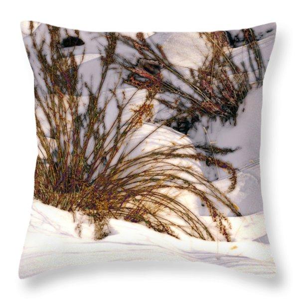 Winter Weeds Throw Pillow by Kae Cheatham