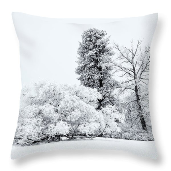 Winter White Throw Pillow by Mike  Dawson