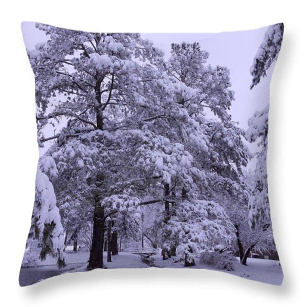 Winter Wonderland 3 Throw Pillow by Mike McGlothlen